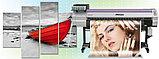 Печать на PVC , фото 3