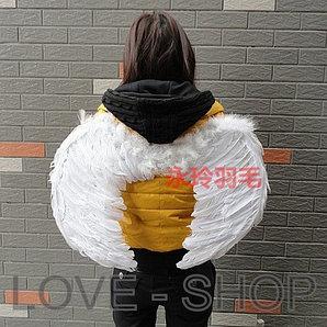 Крылья Ангела (55 см).