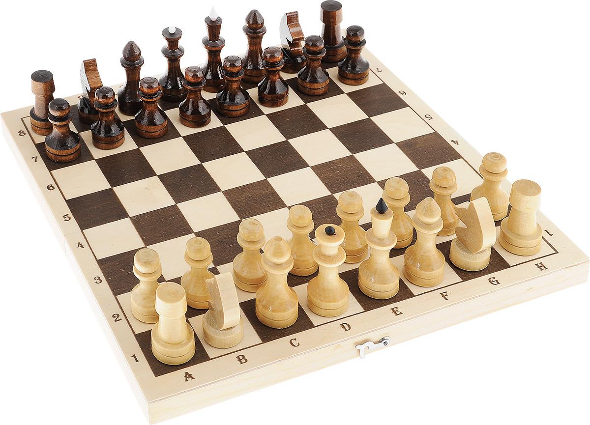 Шахматы (разные модели) деревянные, в тубусе,магнитные