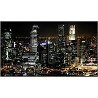 LCD панель Panasonic TH-55SF1HW
