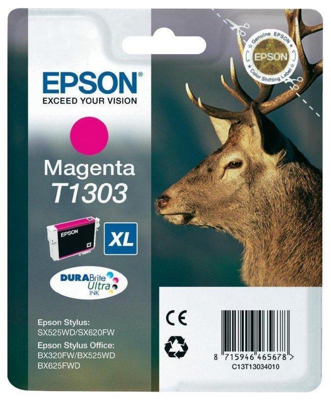 Картридж Epson C13T13034010