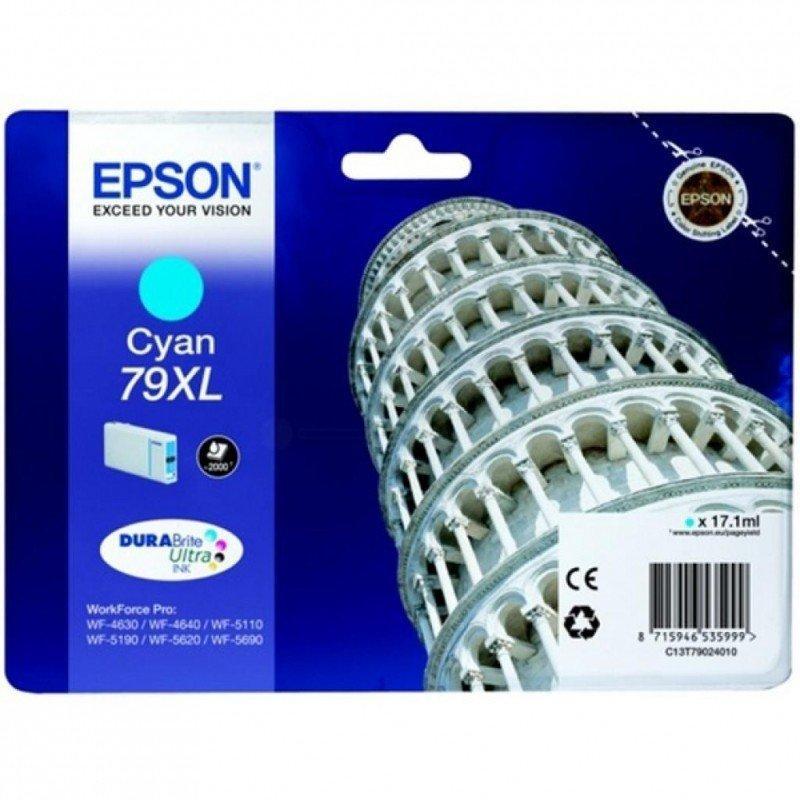 Картридж Epson C13T79024010