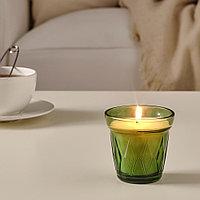 ВЭЛЬДОФТ Ароматическая свеча в стакане, Тимьян темно-зеленый, темно-зеленый, 8 см