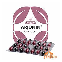 Арджунин для сердца (Arjunin Charak), 20 кап
