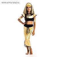 Карнавальный костюм «Клеопатра», головной убор, топик, штаны, нарукавники, р. 28, рост 110 см