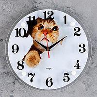 """Часы настенные, серия: Животный мир, """"Кот"""", 30х30 см микс"""