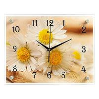 """Часы настенные, серия: Цветы, """"Милые ромашки"""" 30х40 см"""