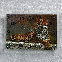 """Часы настенные, серия: Животный мир, """"Леопард""""25х35 см, микс"""