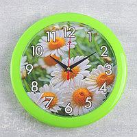 """Часы настенные, серия: Цветы, """"Ромашки"""", зеленое кольцо, 23  см, микс"""