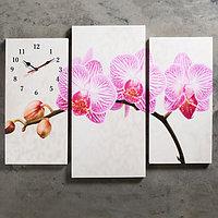 """Часы настенные, серия: Цветы, модульные """"Розовые цветки орхидеи"""", 60х80 см, микс"""