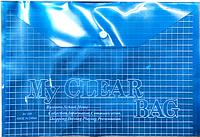 Папка прозрачная в клетку, на кнопке My Clear Bag