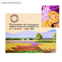 Картина по номерам на холсте «Ветер в гриве» 40х50 см