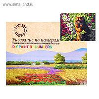 Картина по номерам на холсте «Котик в саду» 40х50 см