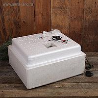 Инкубатор бытовой, на 63 яйца, автоматический переворот, многорежимный, цифровой термометр, 220 В/12 B