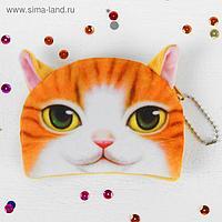 Кошелёк «Рыжий кот»