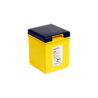 Аккумуляторная батарея PowerSafe 6V105