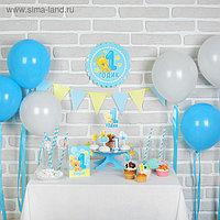 Набор для оформления праздника «1 годик. Малыш», воздушные шары, подставка для торта, гирлянда, топперы,