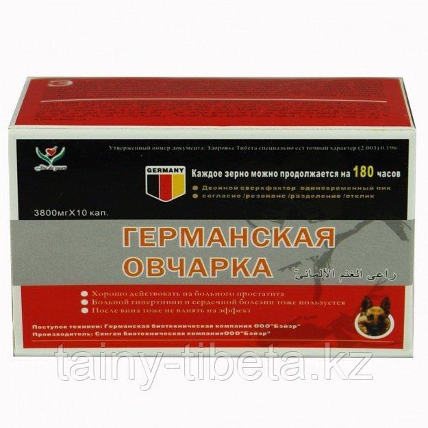 Мощный растительный препарат для улучшения эрекции Германская Овчарка - фото 1