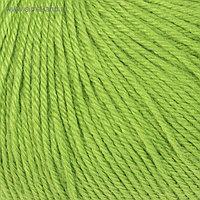 """Пряжа """"Baby Wool"""" 20% кашемир, 40% меринос. шерсть, 40% акрил 175м/50гр (821 яр. зелёный)"""