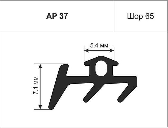 Уплотнител 5592, АР-37  АлПроф, фото 2