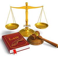 Подготовка ходатайства в суд, государственный орган/организацию