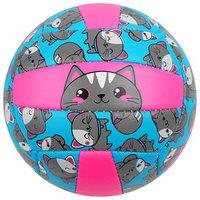 Мяч волейбольный ONLITOP 'Кошечка', размер 2, 150 г, 2 подслоя, 18 панелей, PVC, бутиловая камера
