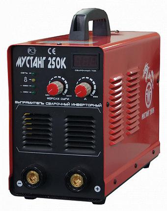 Сварочный выпрямитель Мустанг -255/220 «Плазер», фото 2