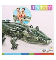 Надувной плотик INTEX с57551 Аллигатор 170х86 см, фото 1