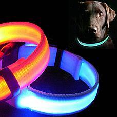 Светодиодный ошейник для собак usb размер M, фото 2