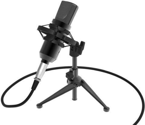 Микрофон студийный настольный конденсаторный RITMIX с USB-адаптером RDM-160, фото 2