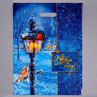 Пакет 'Зимний вечер', полиэтиленовый с вырубной ручкой, 47 х 38 см, 60 мкм (комплект из 50 шт.)