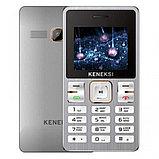 Мобильный телефон Keneksi M2 серебро, фото 2