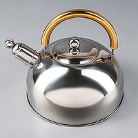 Чайник со свистком «Роскошь», 1,9 л