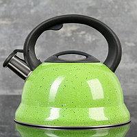 """Чайник со свистком 2,8 л """"Рио"""", фиксированная ручка, цвет зеленый"""