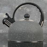"""Чайник со свистком 2 л """"Орион"""", фиксированная ручка, цвет серый"""