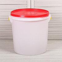 Бак пищевой «Для солений», 45 л, с герметичной крышкой, цвет МИКС