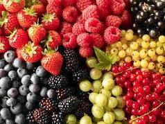 Свежая ягода. Свежие фрукты. Мороженные ягоды. Сушеные ягоды.
