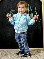 Ветровка принт Мишки голубой арт.1318/053