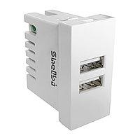 Shelbi 2-портовая USB Розетка зарядка 45х22.5, белая, фото 1