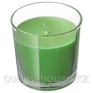 СИНЛИГ Ароматическая свеча в стакане, Яблоко и груша, зеленый, 7.5 см, фото 2
