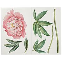 КИННАРЕД Декоративные наклейки, Розовый пион, 116 см