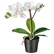 ФЕЙКА Искусственное растение в горшке, Орхидея белый, 9 см