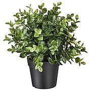 ФЕЙКА Искусственное растение в горшке, душица, 9 см
