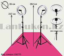 Кольцевая лампа и штатив LED лампа для селфи (3 режима свечения) диаметр лампы 36 см Dimmable