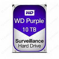 Жесткий диск Western Digital WD101PURX
