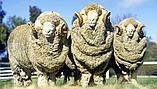 Одеяло из овечьей шерсти «Астра», фото 3