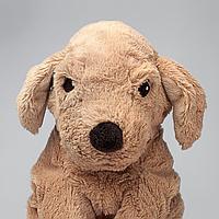 Мягкая игрушка, собака, золотистый ретривер, 40 см