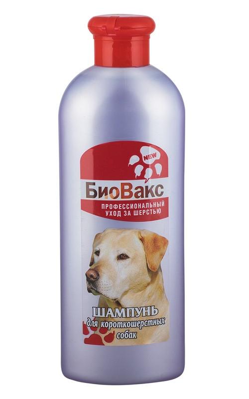 Шампунь БиоВакс для короткошерстных собак