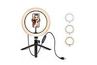 Кольцевая селфи лампа 20 см с держателем для телефона, фото 1
