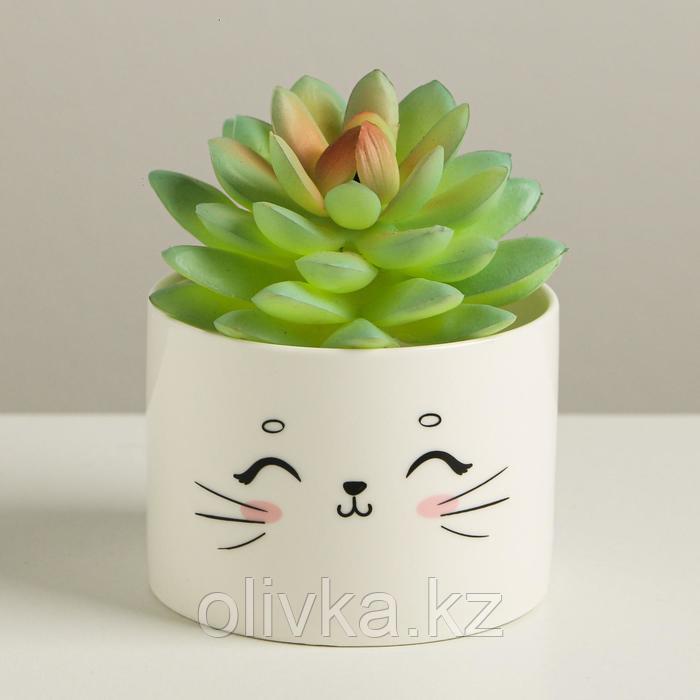 Керамический белый горшок «Кот», 8 х 5,5 см